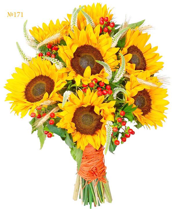 Pastoral, Sunflower, Hypericum, Veronica White, Birthday